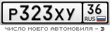 P323XY36.png