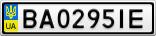 Номерной знак - BA0295IE