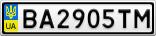 Номерной знак - BA2905TM