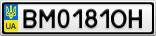 Номерной знак - BM0181OH
