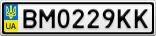 Номерной знак - BM0229KK