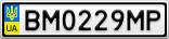 Номерной знак - BM0229MP