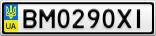 Номерной знак - BM0290XI
