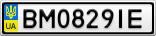 Номерной знак - BM0829IE