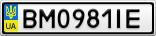 Номерной знак - BM0981IE