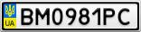 Номерной знак - BM0981PC