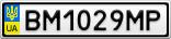 Номерной знак - BM1029MP
