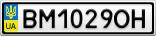 Номерной знак - BM1029OH
