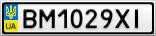 Номерной знак - BM1029XI