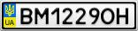 Номерной знак - BM1229OH