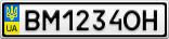 Номерной знак - BM1234OH