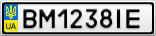 Номерной знак - BM1238IE