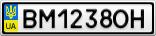 Номерной знак - BM1238OH