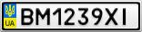 Номерной знак - BM1239XI
