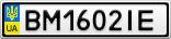 Номерной знак - BM1602IE