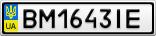 Номерной знак - BM1643IE