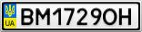 Номерной знак - BM1729OH