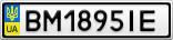Номерной знак - BM1895IE