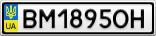 Номерной знак - BM1895OH