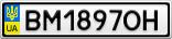 Номерной знак - BM1897OH