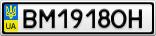 Номерной знак - BM1918OH