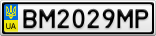 Номерной знак - BM2029MP