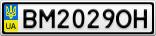 Номерной знак - BM2029OH