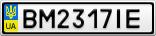 Номерной знак - BM2317IE