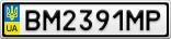 Номерной знак - BM2391MP