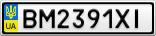 Номерной знак - BM2391XI