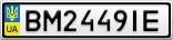 Номерной знак - BM2449IE