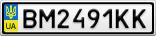 Номерной знак - BM2491KK