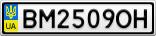 Номерной знак - BM2509OH