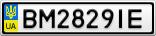 Номерной знак - BM2829IE