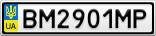 Номерной знак - BM2901MP