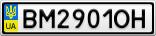 Номерной знак - BM2901OH