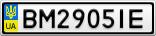 Номерной знак - BM2905IE