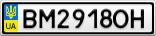 Номерной знак - BM2918OH