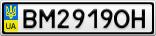 Номерной знак - BM2919OH