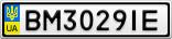 Номерной знак - BM3029IE
