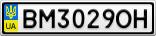 Номерной знак - BM3029OH