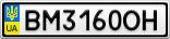 Номерной знак - BM3160OH