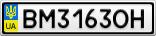 Номерной знак - BM3163OH