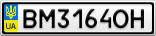 Номерной знак - BM3164OH