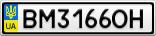 Номерной знак - BM3166OH