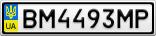 Номерной знак - BM4493MP