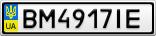 Номерной знак - BM4917IE