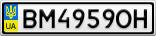 Номерной знак - BM4959OH