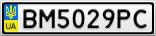 Номерной знак - BM5029PC