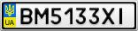 Номерной знак - BM5133XI